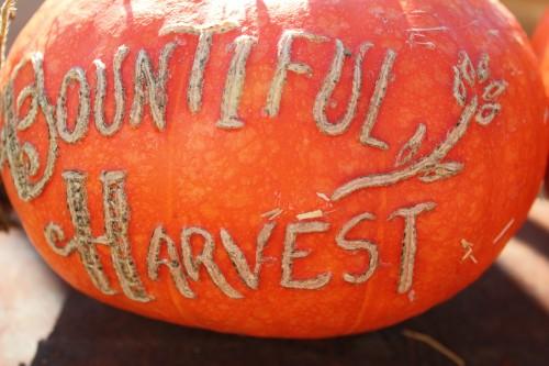 pumpkins at Remnants of the Past