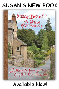 Susans-New-Book-AFR2