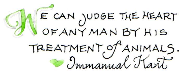 heart of any man
