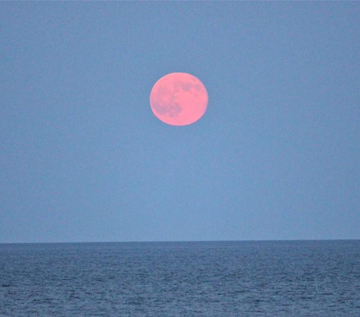 zee super moon