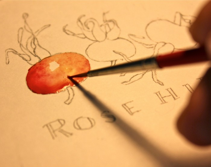 painting rosehips