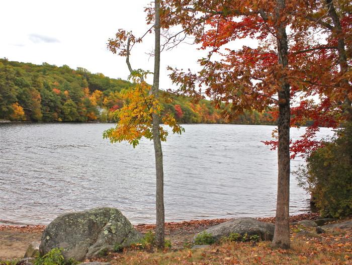 Wallum Lake