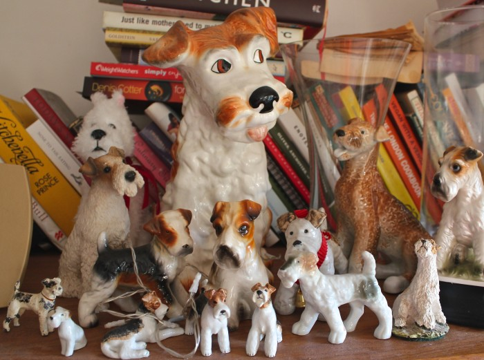 Ray's terrier collection