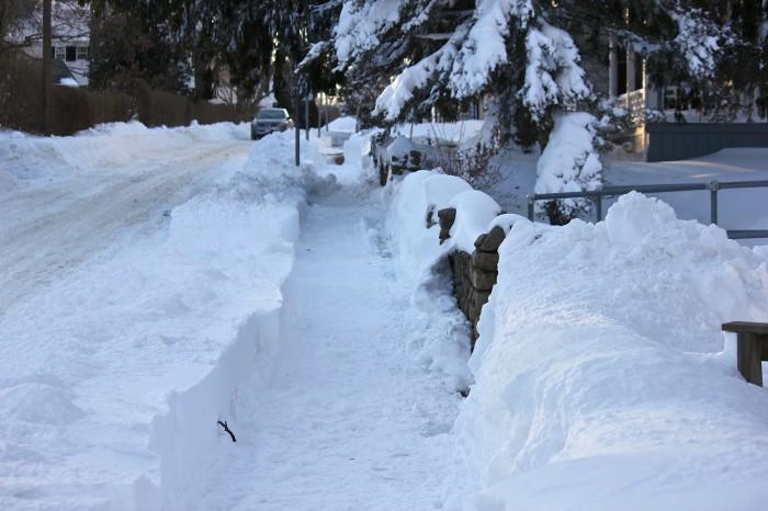 a shoveled walk