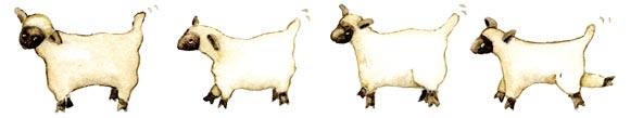 lambs-art