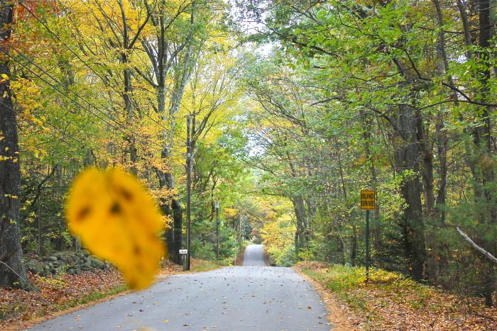 Backroads of New England