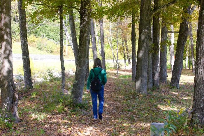 walking in vermont woods
