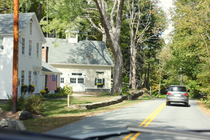 love the flags in Vermont
