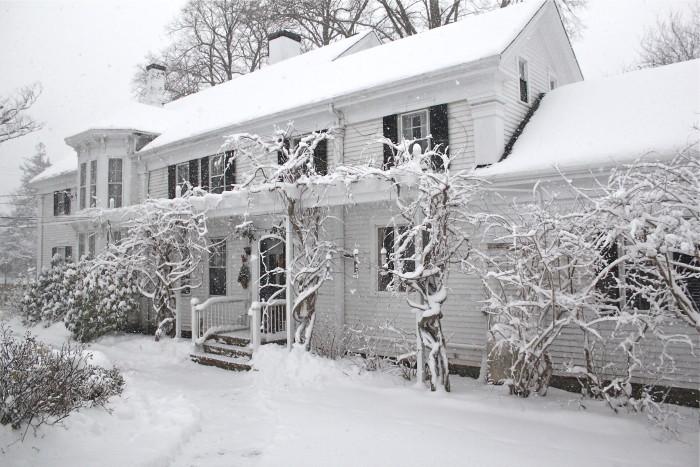 Winter storm Martha's Vineyard